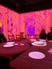 Interactive tea party in Wonderland at ACMI