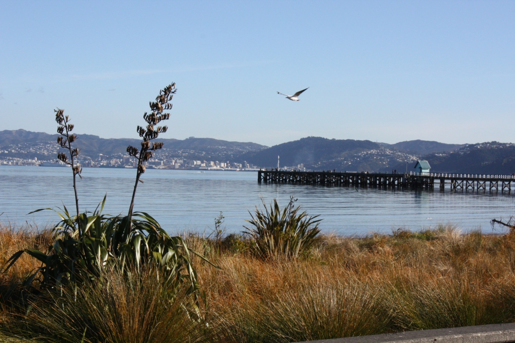 petone beach - petone - view of the wharf and wellington from behind san...